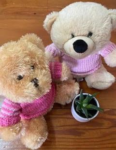 custom bears for babies